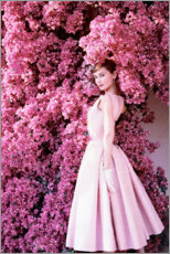 PVC-tavla  Audrey Hepburn i rosa klänning - Celebrity Collection