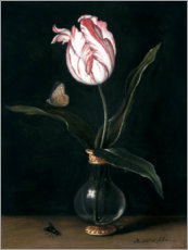 Canvastavla  The ?Zomerschoon' tulip - Balthasar van der Ast