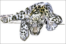 Canvastavla  Arabisk leopard - Mark Adlington