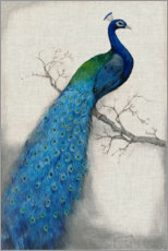 Canvastavla  Peacock Blue I - Tim O'Toole