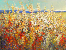 Premiumposter  Field of Spring Flowers II - Tim O'Toole