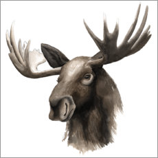 Canvastavla  Moose portrait - Grace Popp