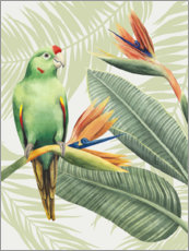 Canvastavla  Amazon parrot - Grace Popp