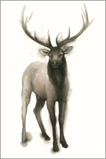 Poster Majestic stag
