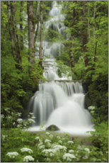 Premiumposter  Waterfall in the forest, France - Tobias Richter