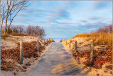 Premiumposter  Beach path on Usedom - Reemt Peters-Hein