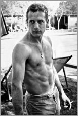 Poster Paul Newman - no shirt