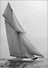 Canvastavla  American sailboat