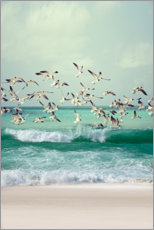 Premiumposter  Seagulls on the beach - Art Couture