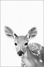Premiumposter  Young deer - Art Couture