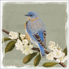 Poster  Bird on a branch i - Victoria Borges