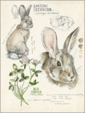 Premiumposter Bunny and clover