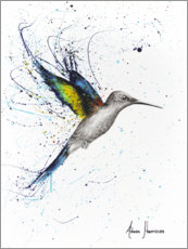 Canvastavla  Happy Hummingbird - Ashvin Harrison