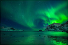 Premiumposter  Northern Lights at Haukland Beach - Felix Pergande