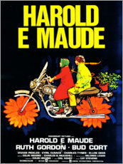 Canvastavla  Harold and Maude (Italian) - Entertainment Collection