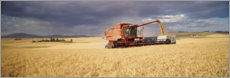Premiumposter  Combine harvester on a field at Palouse