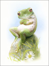 Canvastavla  Frog, waiting - Simon Mendez