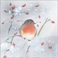 Premiumposter  Robins in winter - Ray Shuell