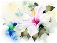 Canvastavla  Hibiscus and hummingbird - Rachel McNaughton