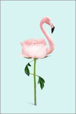 Premiumposter  Flamingo Rose - Jonas Loose