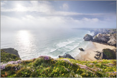 Akrylglastavla  Spring on the Cornish coast - The Wandering Soul