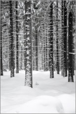 Premiumposter  Deep dark white FOREST - Studio Nahili
