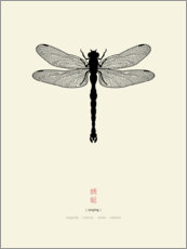 Premiumposter Dragonfly