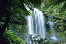 Galleritryck  Russell Falls and tree ferns - Kevin Schafer