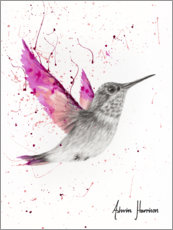 Premiumposter Magetna Rose Bird