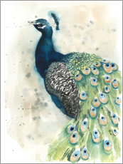 Canvastavla  Peacock Portrait - Grace Popp