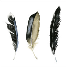 Premiumposter Soft Feathers II