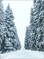 Premiumposter Snowy forest