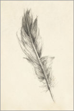 Premiumposter Feather Sketch I