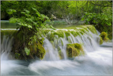 Premiumposter  Waterfall in the fairy forest - Dieter Meyrl