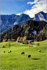 Galleritryck  Alps and pasture cows - Ric Ergenbright