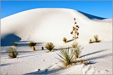 Galleritryck  Dunes of White Sands - Bernard Friel