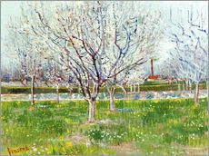 Galleritryck  Blossoming orchard - Vincent van Gogh