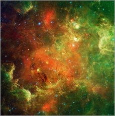 Galleritryck  Clusters of young stars