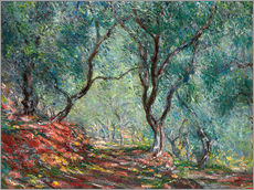 Galleritryck  The Olive Tree Wood In The Moreno Garden - Claude Monet