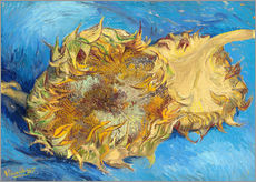 Galleritryck  Two sunflowers - Vincent van Gogh