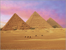 Galleritryck  Pyramids at sunset - Miva Stock