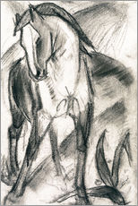 Galleritryck  Young Horse in Mountain Landscape - Franz Marc