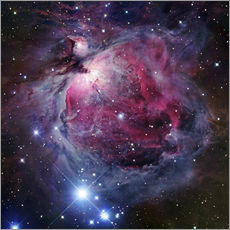 Galleritryck  The Orion Nebula - Robert Gendler