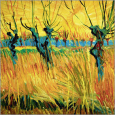 Aluminiumtavla  Willows at sunset - Vincent van Gogh