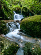 Galleritryck  Little Waterfall in Black Forest - Andreas Wonisch