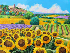 Galleritryck  Vineyards and sunflowers in Provence - Jean-Marc Janiaczyk