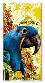 Premiumposter Blue macaw