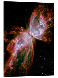 Akrylglastavla  The Butterfly Nebula