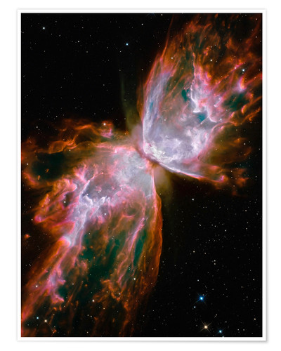Premiumposter The Butterfly Nebula