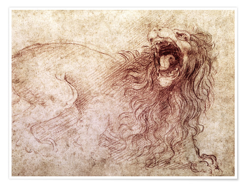 Premiumposter Sketch of a roaring lion
